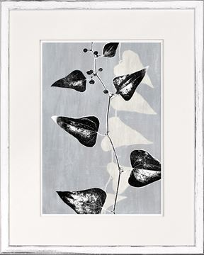 Picture of Botanical Overlay - Grey IX Small