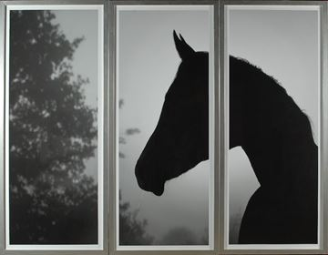 Picture of Horse Silhouette - Triptych