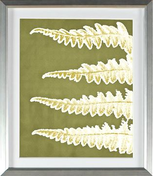 Picture of Chartreuse - Four Fronds (Large)