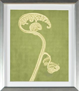 Picture of Chartreuse - Fiddlehead