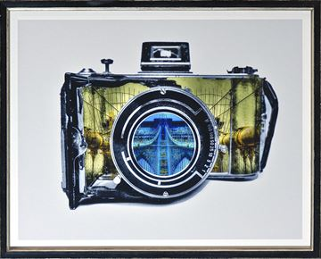 Picture of Vintage Camera III Colour