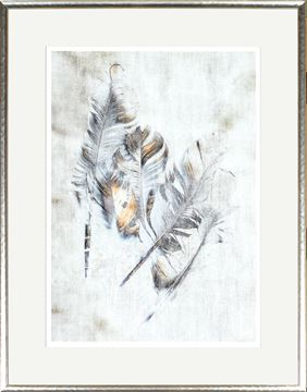 Picture of Copper Touched Feathers II