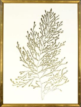 Picture of Gold Foil Algae IV