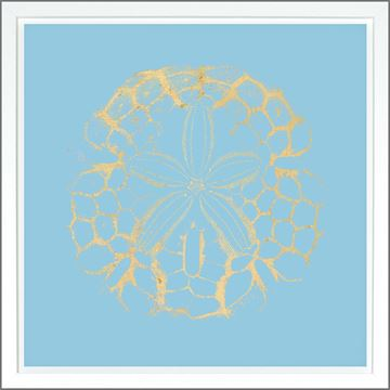 Picture of Sand Dollar Lt Blue - Gold