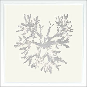 Picture of Coral Ivory - Silver