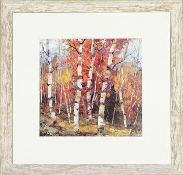 Picture of Birch Colors IV - Sml