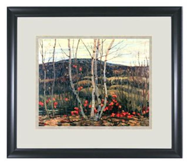 Picture of Group - Maple & Birches
