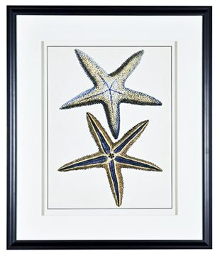 Picture of Antique Blue Starfish I