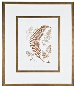 Picture of Sepia Ferns IV