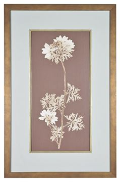 Picture of Taupe Nature Study II