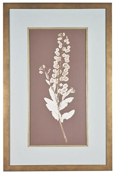 Picture of Taupe Nature Study III