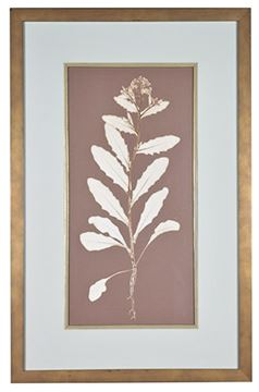 Picture of Taupe Nature Study IV