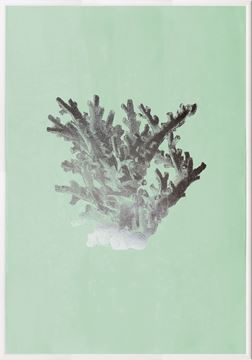 Picture of Silver Foil Coral I On Seafoam Wash
