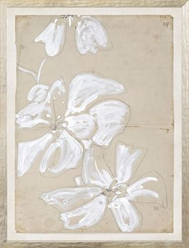 Picture of Restoration Paper XXI - Small
