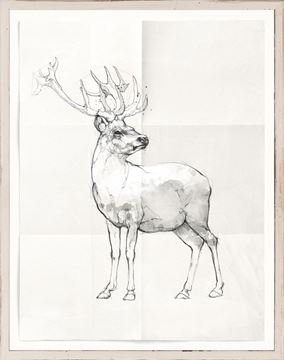 Picture of Sketch - Stag
