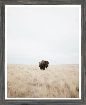 Picture of Mod. Farm - Great Plains Denizen - Grey