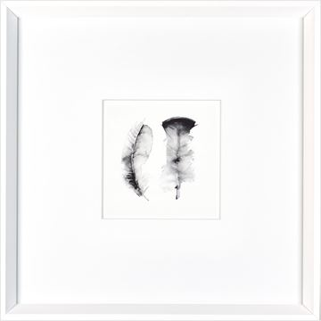 Picture of Watercolor Feathers  - White