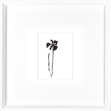 Picture of One Flower  - White