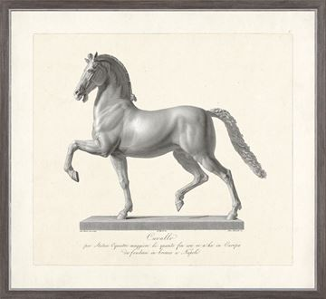 Picture of Cavallo Etching 1812 II