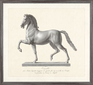 Picture of Cavallo Etching 1812 II - Large