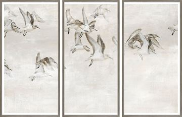 Picture of Sandpipers Take Wing - Triptych