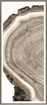 Picture of Live Edge Detail I