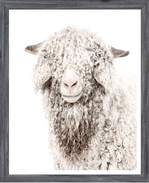 Picture of Mod. Farm - Angora Goat - Mini - Grey