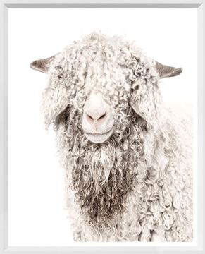 Picture of Mod. Farm - Angora Goat - Mini - White