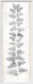 Picture of Tall Frond II - Cream and Grey