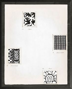 Picture of Motif Graphique Francais I