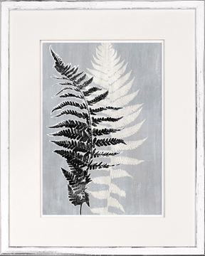 Picture of Botanical Overlay - Grey VII Small