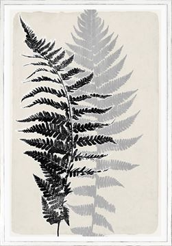Picture of Botanical Overlay - Cream VII Large
