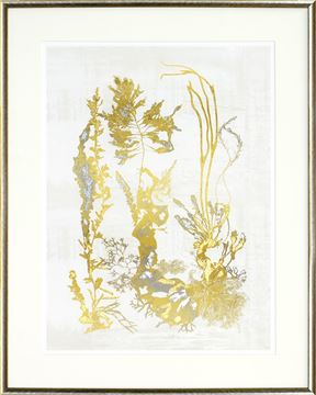 Picture of Pressed Seaweed - Gild II