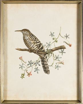 Picture of Delicate Birds IV - Framed on Board