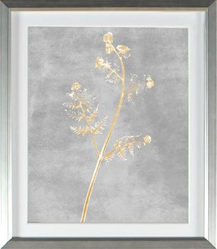 Picture of Honey Gold - New Frond