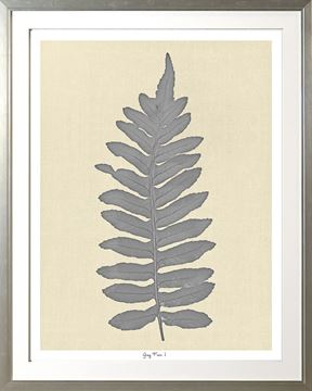 Picture of Grey Fern I Lge
