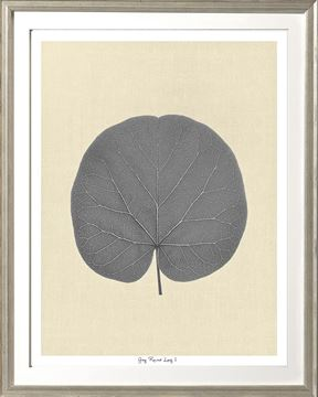 Picture of Grey Round Leaf I Sml