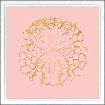 Picture of Sand Dollar Pink - Gold