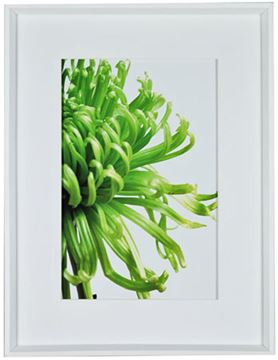 Picture of Green Bloom II