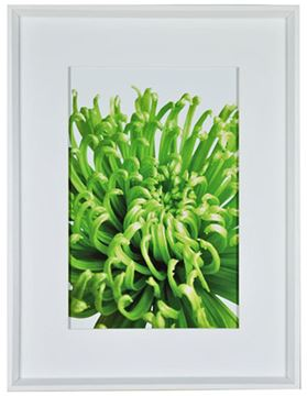 Picture of Green Bloom V