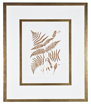 Picture of Sepia Ferns I