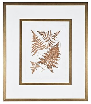 Picture of Sepia Ferns VI