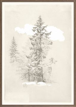 Picture of Collection 07 - Church - Tree Drawing - 1868