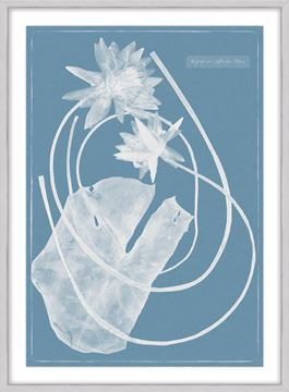 Picture of Cyanotype Water Lilies V - Large