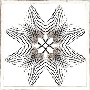 Picture of Feather Mandala III