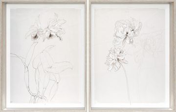 Picture of Drawing Study Orchid & Peony, Early 20 Centry S/2