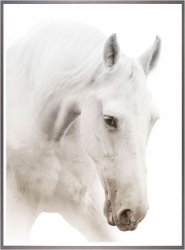 Picture of Argent Cheval I-Large