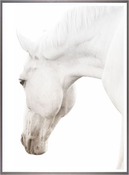 Picture of Argent Cheval II-Large