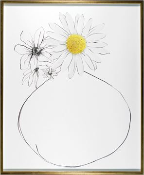 Picture of One Daisy