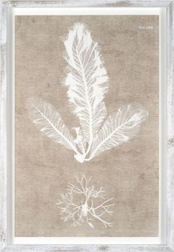 Picture of Nature Printed On Linen I